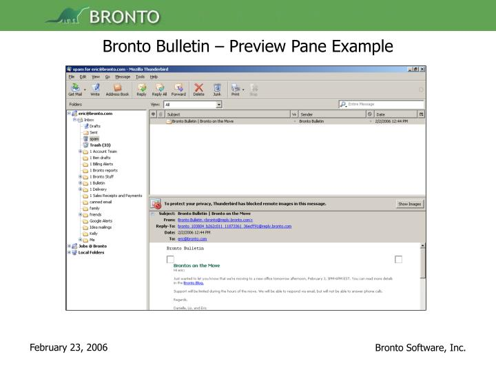 Bronto Bulletin – Preview Pane Example