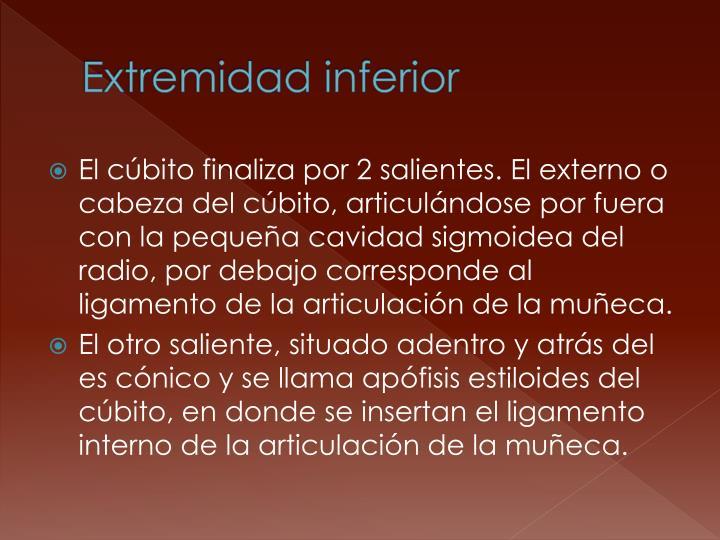 Extremidad inferior