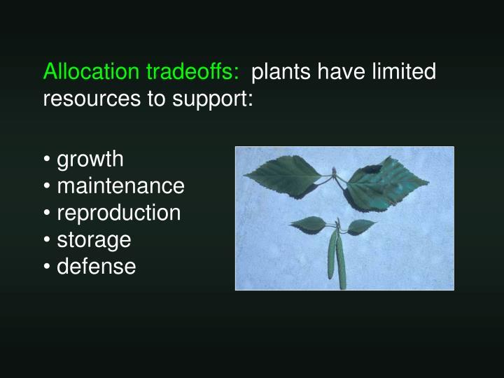 Allocation tradeoffs:
