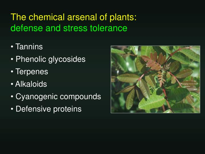 The chemical arsenal of plants: