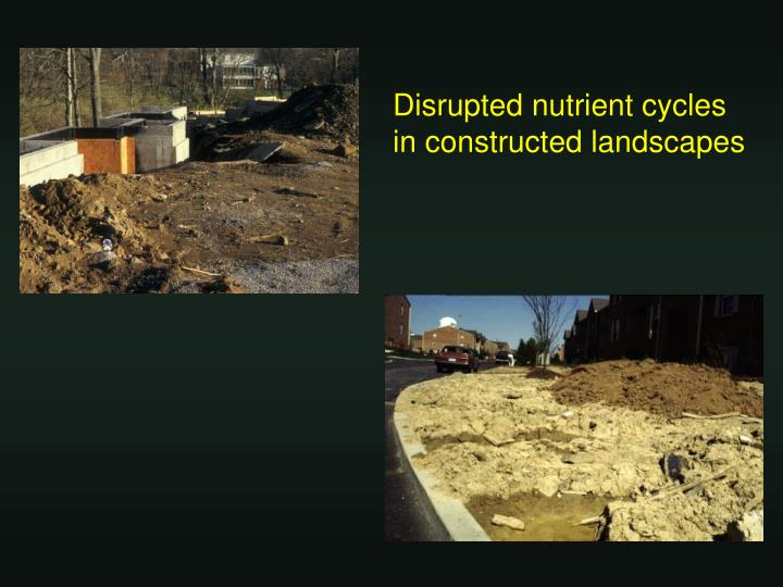 Disrupted nutrient cycles in constructed landscapes