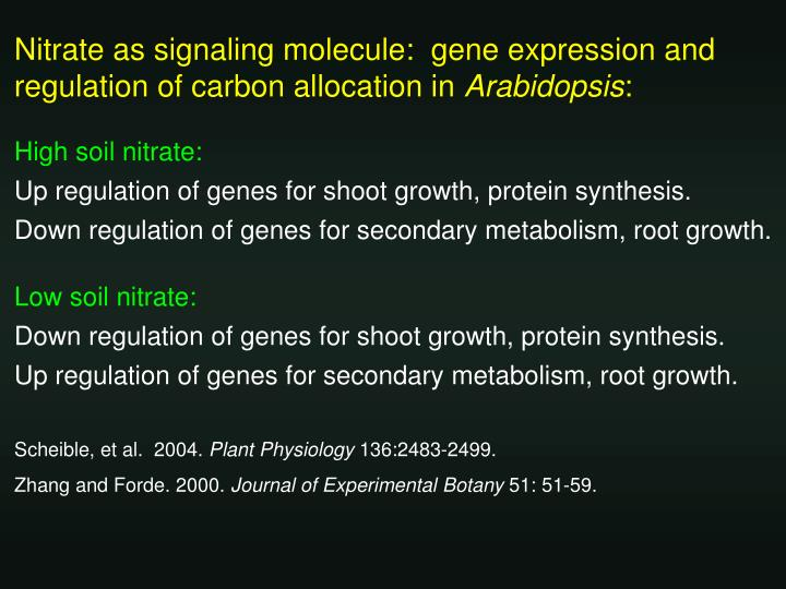 Nitrate as signaling molecule:  gene expression and regulation of carbon allocation in