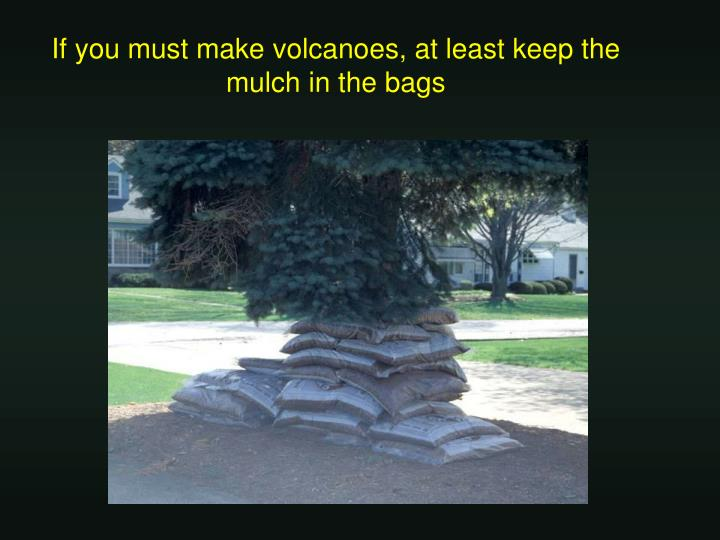 If you must make volcanoes, at least keep the mulch in the bags