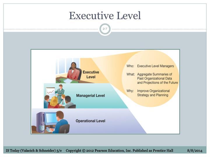 Executive Level