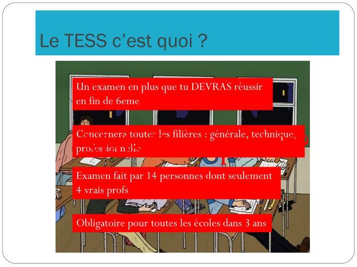 Le TESS c'est quoi ?