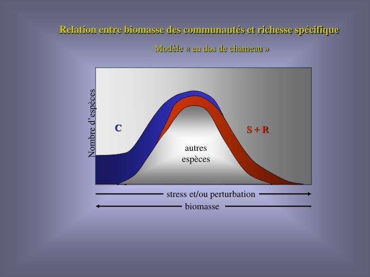Relation entre biomasse des communautés et richesse spécifique
