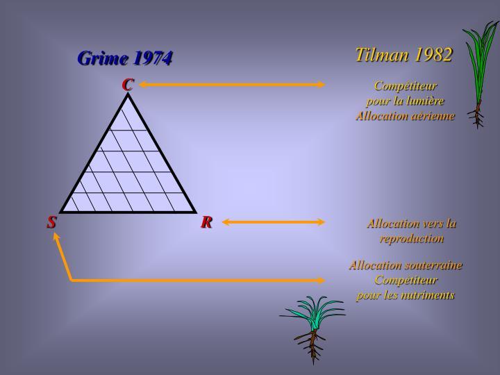 Tilman 1982