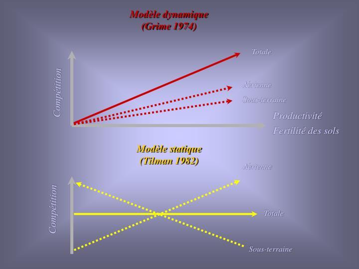 Modèle dynamique (Grime 1974)