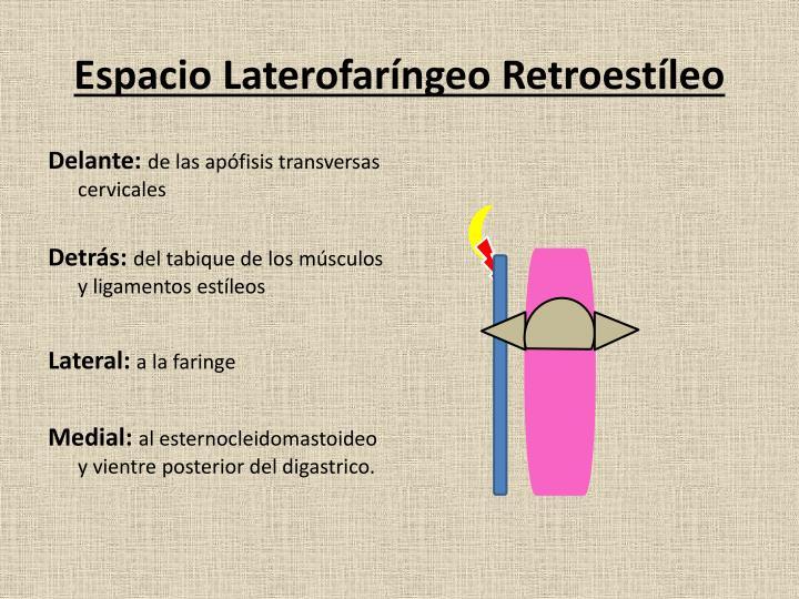 Espacio Laterofaríngeo Retroestíleo