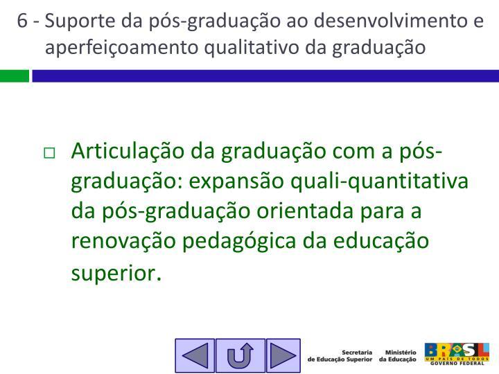 6 - Suporte da pós-graduação ao desenvolvimento e aperfeiçoamento qualitativo da graduação