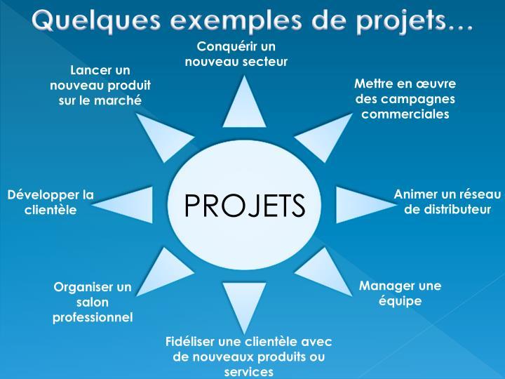 Quelques exemples de projets…