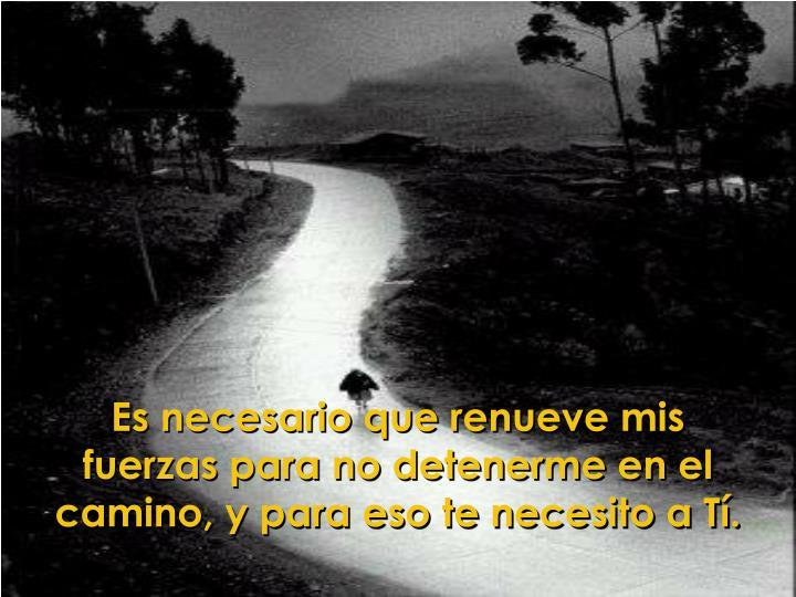 Es necesario que renueve mis fuerzas para no detenerme en el camino, y para eso te necesito a Tí.