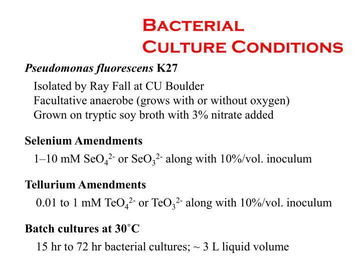 Bacterial
