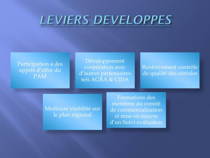 LEVIERS DEVELOPPES