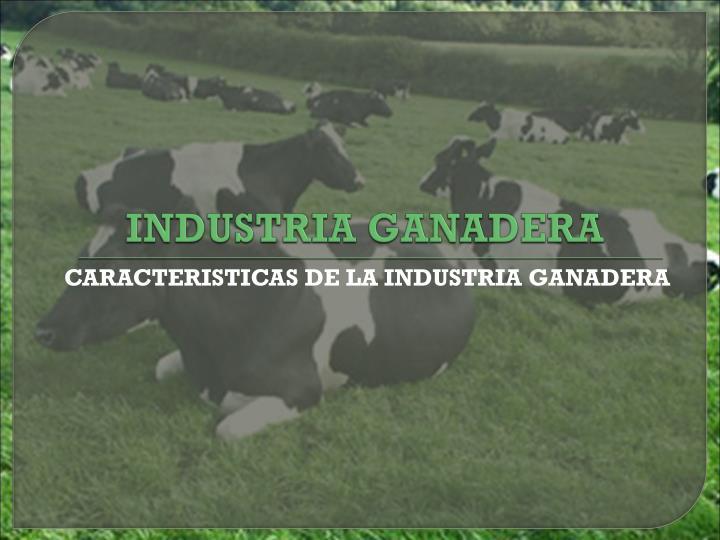 INDUSTRIA GANADERA