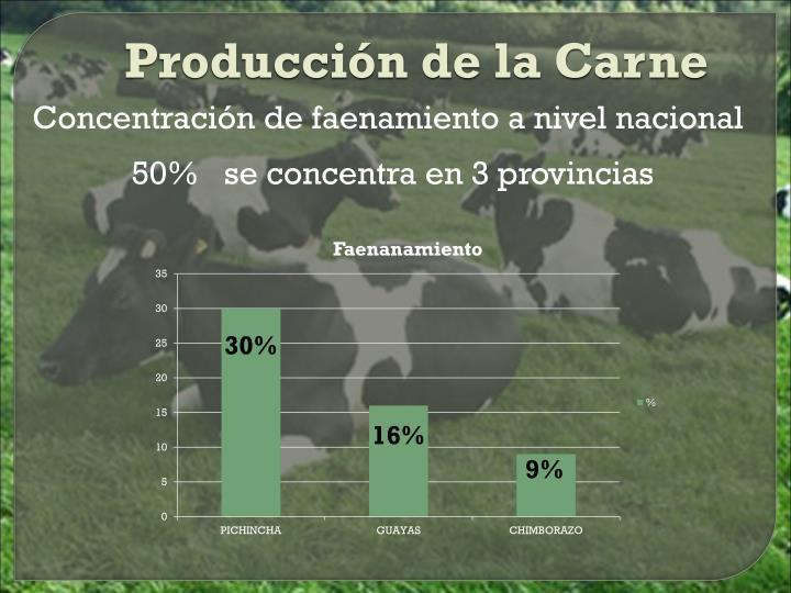 Producción de la Carne