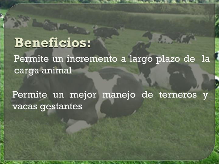 Beneficios: