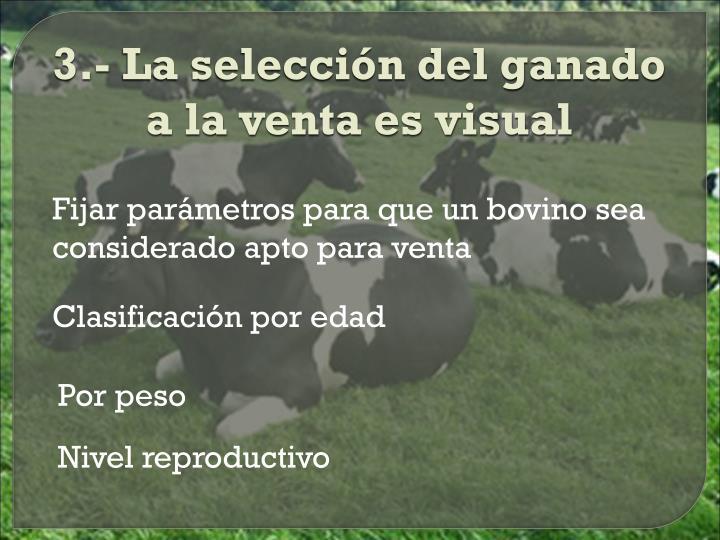 3.- La selección del ganado a la venta es visual
