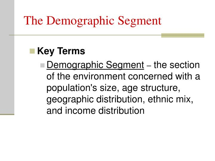 The Demographic Segment