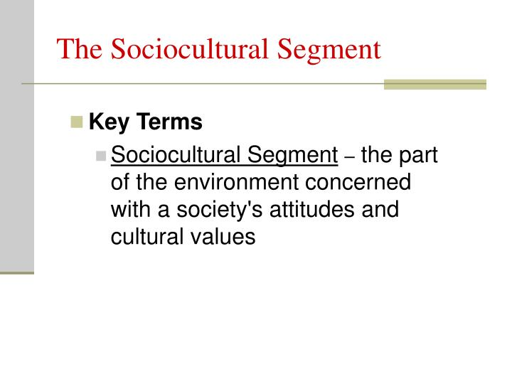 The Sociocultural Segment