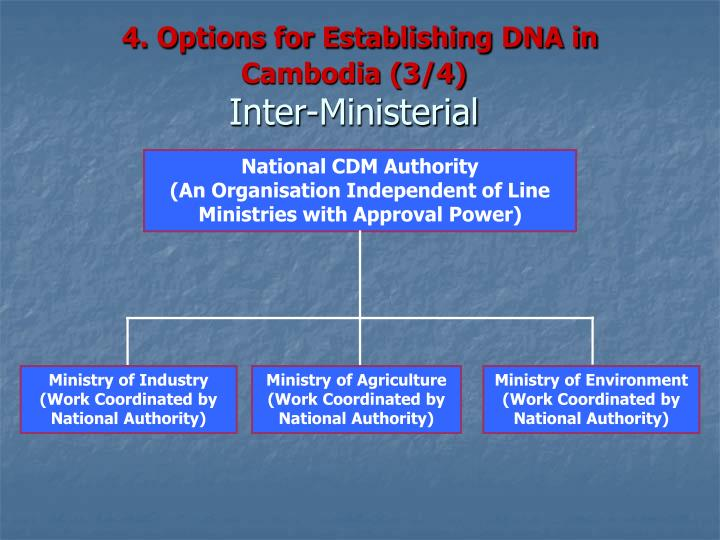 4. Options for Establishing DNA in Cambodia (3/4)