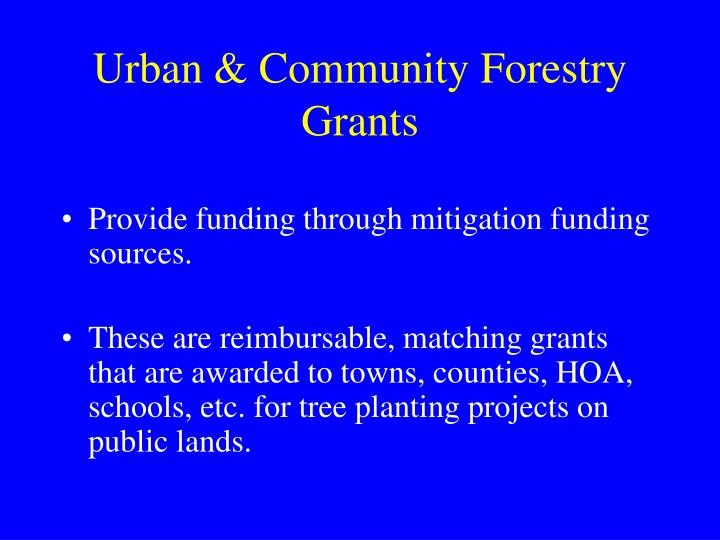 Urban & Community Forestry Grants