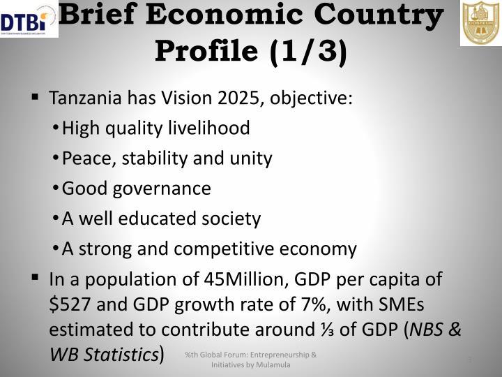Brief Economic Country Profile (1/3)