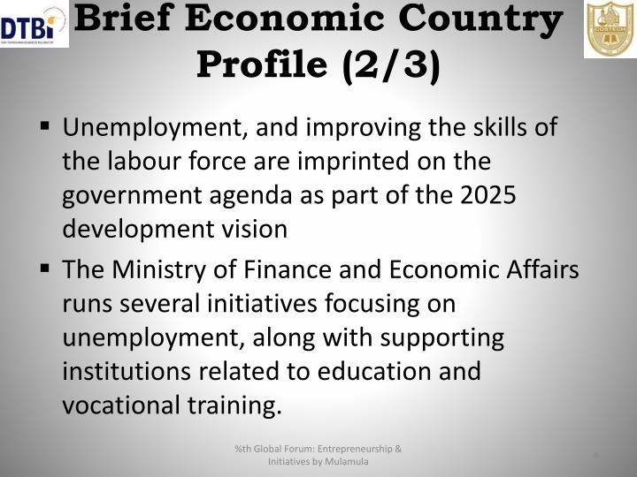 Brief Economic Country Profile (2/3)