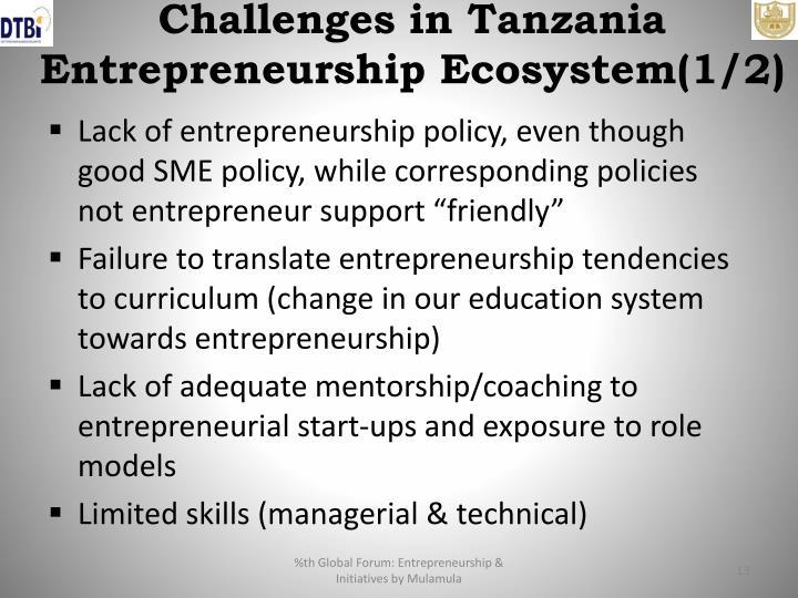 Challenges in Tanzania Entrepreneurship Ecosystem(1/2)