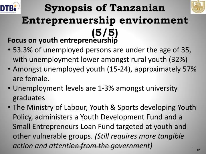 Synopsis of Tanzanian Entreprenuership environment (5/5)