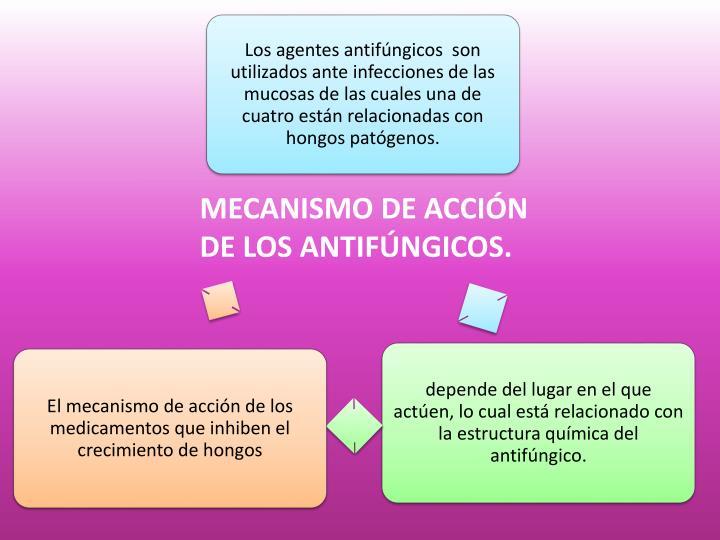 MECANISMO DE ACCIÓN DE LOS ANTIFÚNGICOS