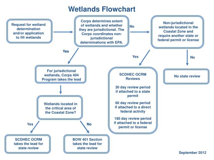 Wetlands Flowchart