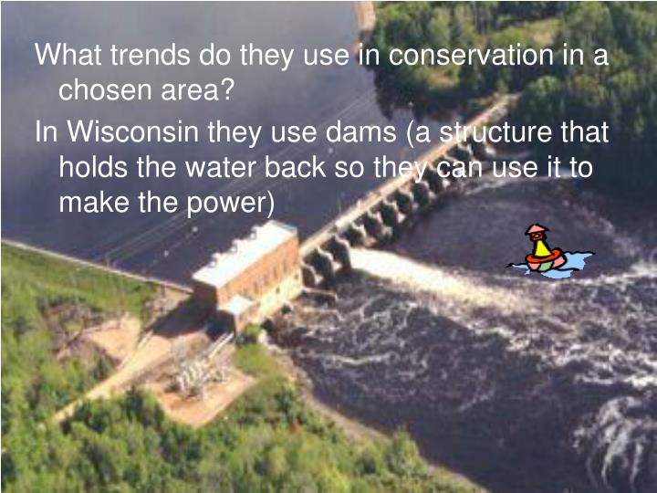 What trends do they use in conservation in a chosen area?