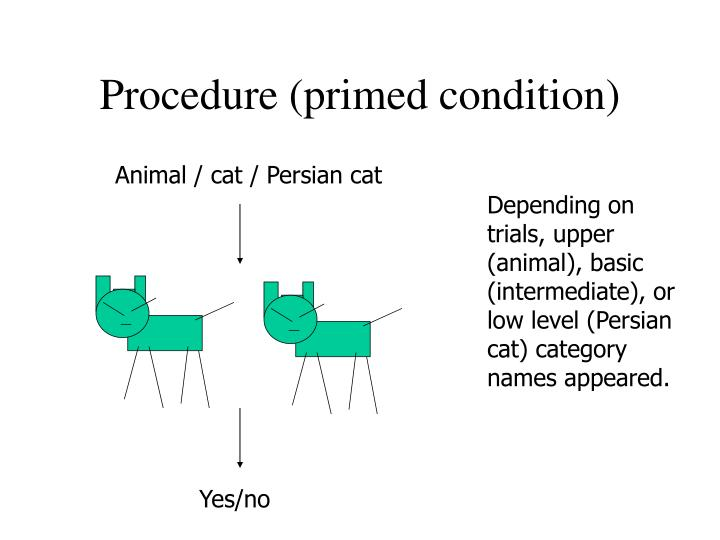 Procedure (primed condition)