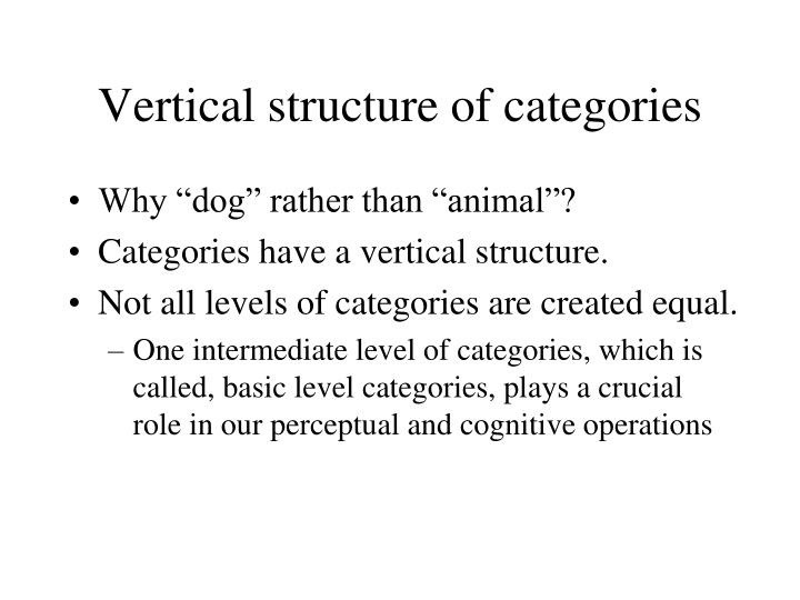 Vertical structure of categories