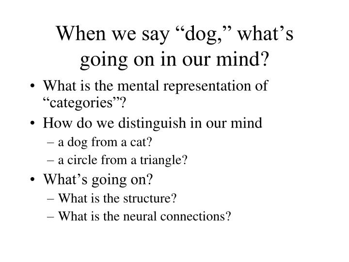 "When we say ""dog,"" what's going on in our mind?"