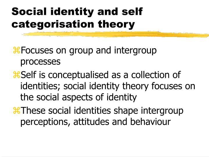 identity theory and folk psychology essay On this view, folk psychology is a psychological theory constituted by the platitudes about the mind ordinary people are inclined to endorse to reduce terminological ambiguity, throughout this entry the term ³mindreading´ will be used to refer to that set of cognitive capacities which include (but is not.