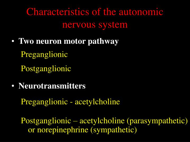 Characteristics of the autonomic nervous system
