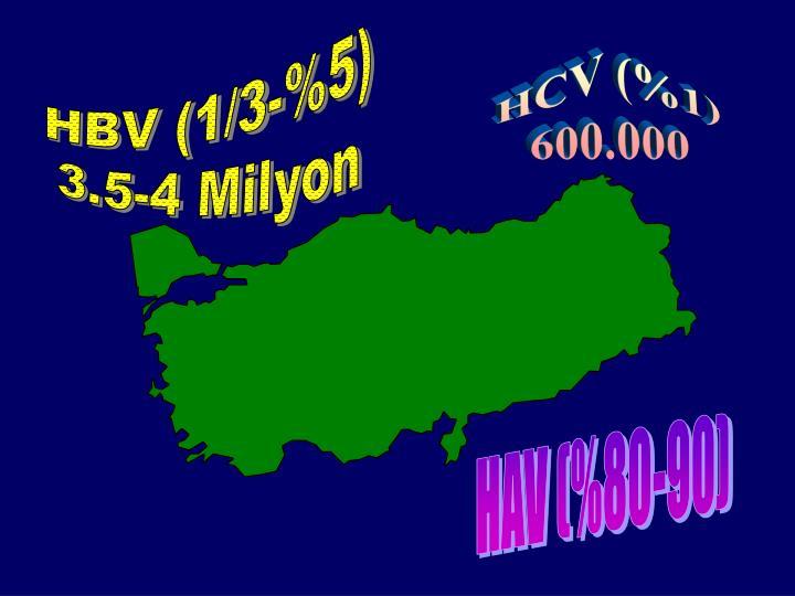 HBV (1/3-%5)