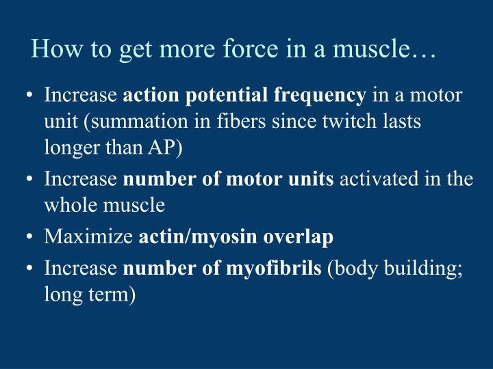 How to get more force in a muscle…