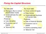 fixing the capital structure