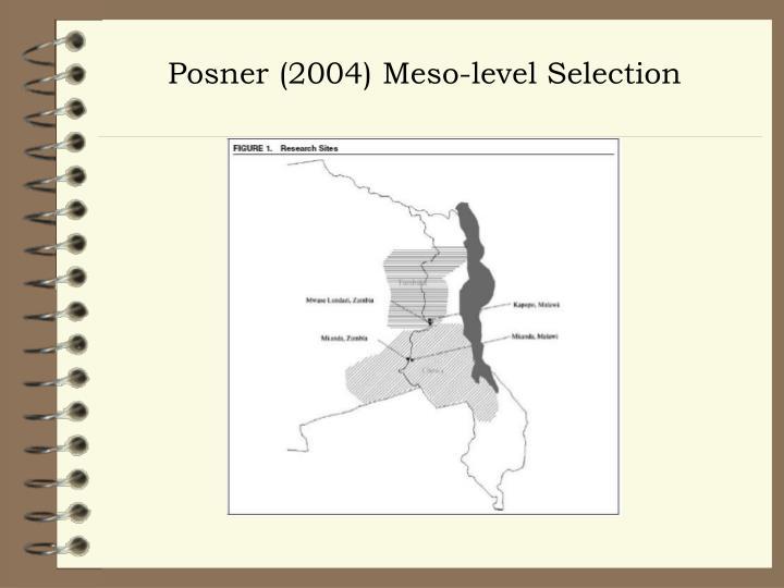 Posner (2004) Meso-level Selection