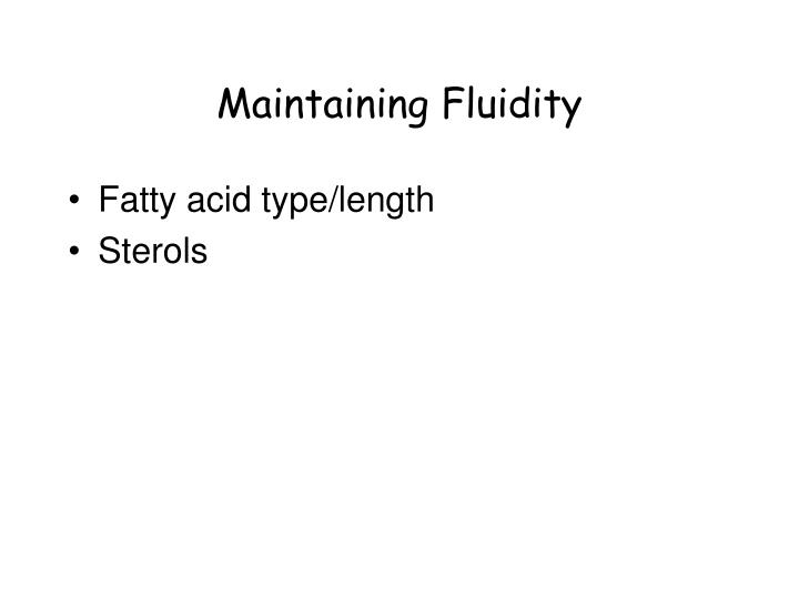 Maintaining Fluidity