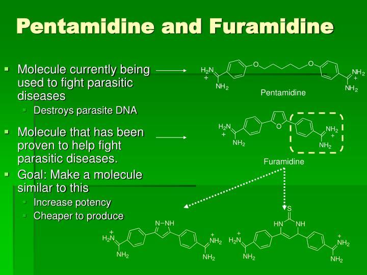 Pentamidine and Furamidine