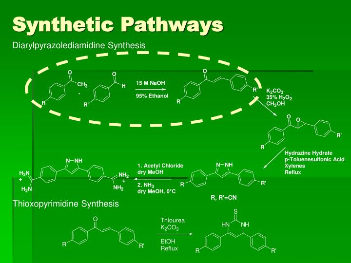 Synthetic Pathways