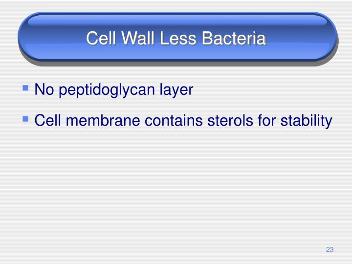 Cell Wall Less Bacteria