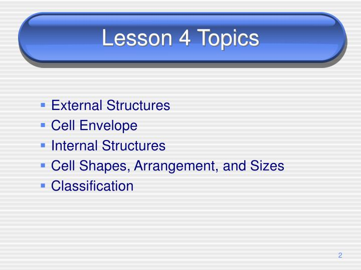 Lesson 4 Topics