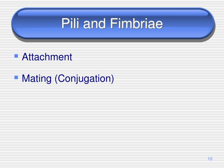 Pili and Fimbriae