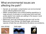 what environmental issues are affecting the park