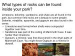 what types of rocks can be found inside your park